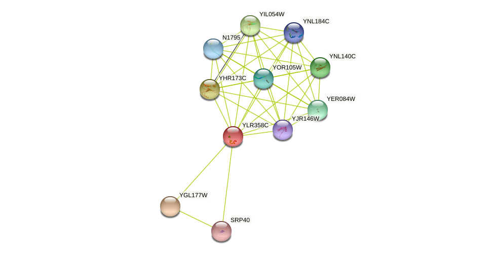 YLR358C protein (Saccharomyces cerevisiae) - STRING interaction network
