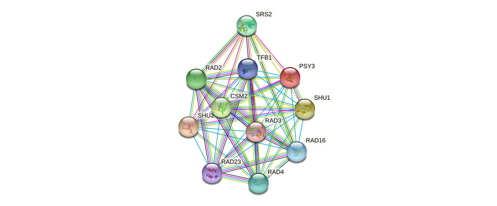 PSY3 protein (Saccharomyces cerevisiae) - STRING interaction network