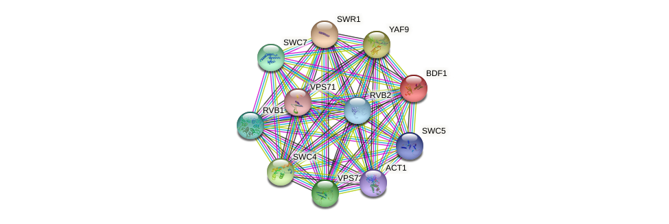BDF1 protein (Saccharomyces cerevisiae) - STRING interaction network