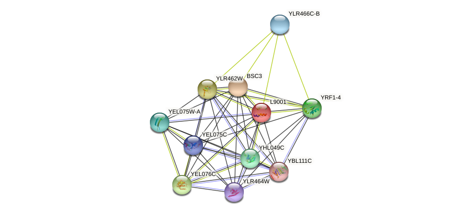 L9001 protein (Saccharomyces cerevisiae) - STRING interaction network