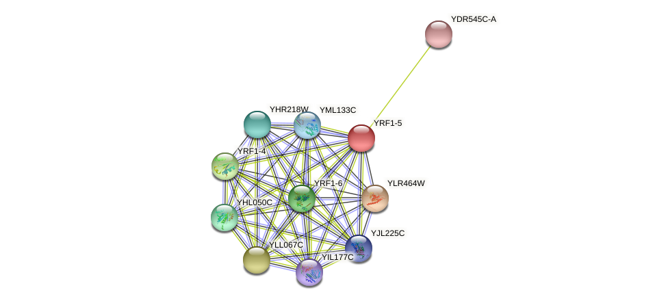 YRF1-5 protein (Saccharomyces cerevisiae) - STRING interaction network