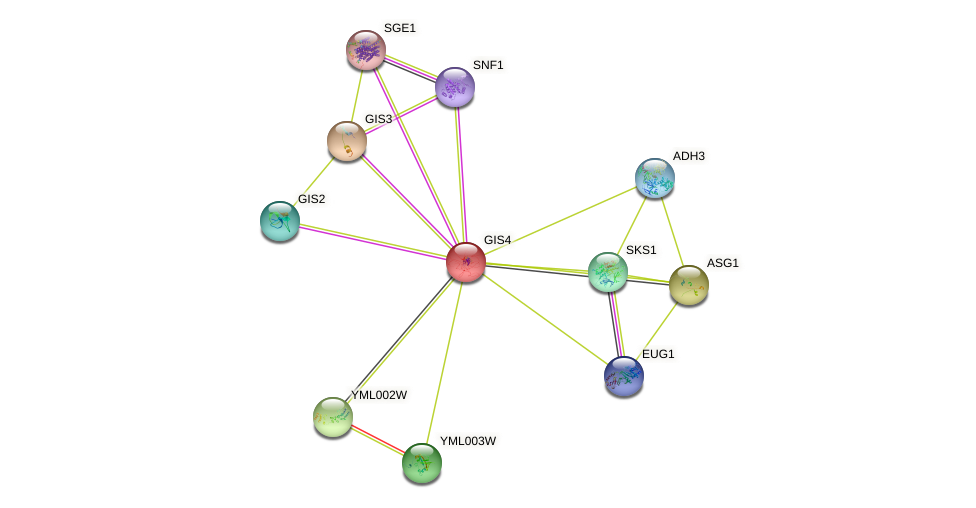 GIS4 protein (Saccharomyces cerevisiae) - STRING interaction network
