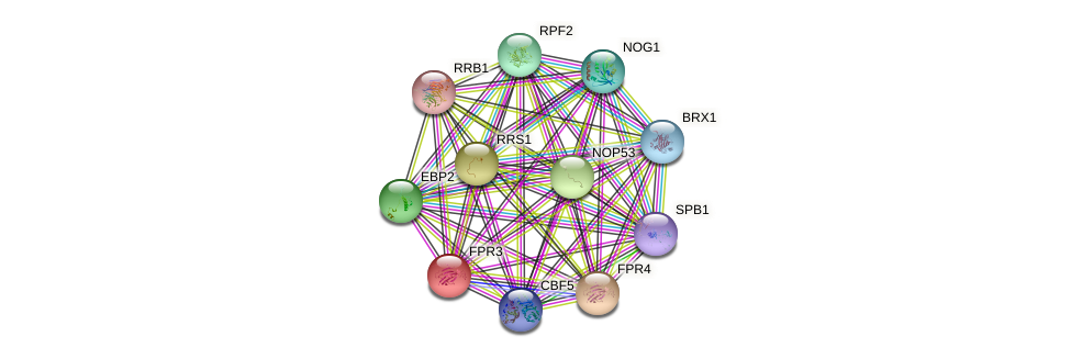FPR3 protein (Saccharomyces cerevisiae) - STRING interaction network
