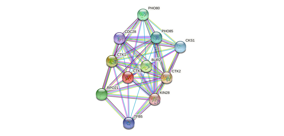 CTK3 protein (Saccharomyces cerevisiae) - STRING interaction network
