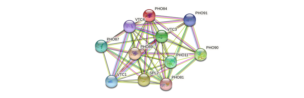 PHO84 protein (Saccharomyces cerevisiae) - STRING interaction network
