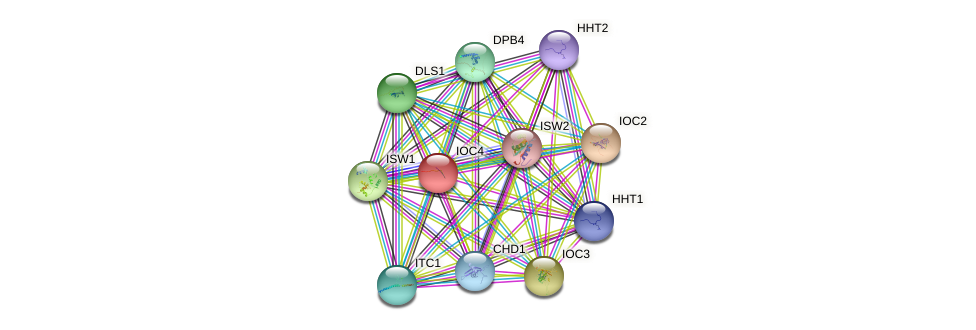 IOC4 protein (Saccharomyces cerevisiae) - STRING interaction network