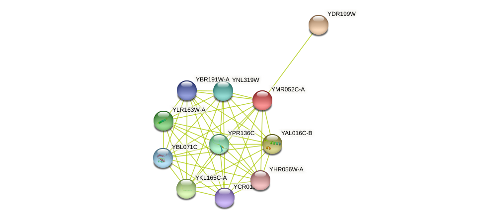 YMR052C-A protein (Saccharomyces cerevisiae) - STRING interaction network