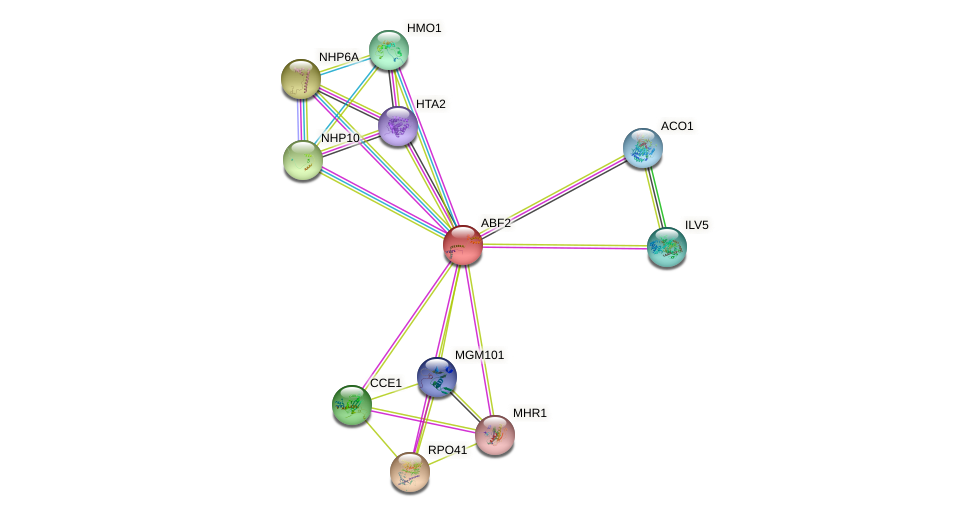 ABF2 protein (Saccharomyces cerevisiae) - STRING interaction network
