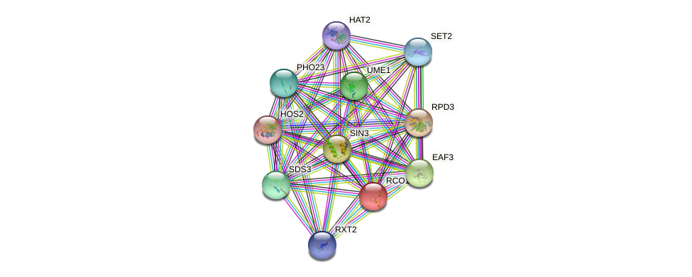 RCO1 protein (Saccharomyces cerevisiae) - STRING interaction network
