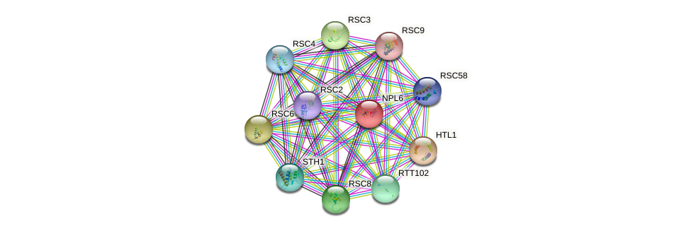 NPL6 protein (Saccharomyces cerevisiae) - STRING interaction network