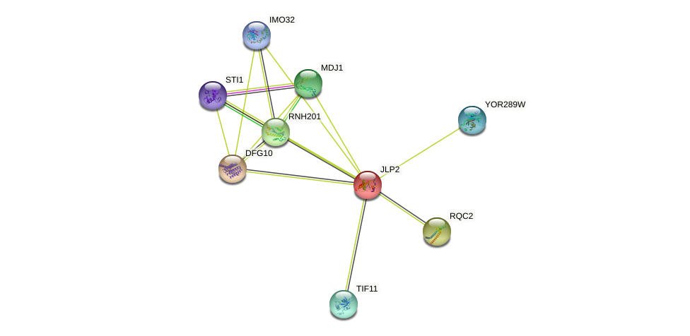 JLP2 protein (Saccharomyces cerevisiae) - STRING interaction network