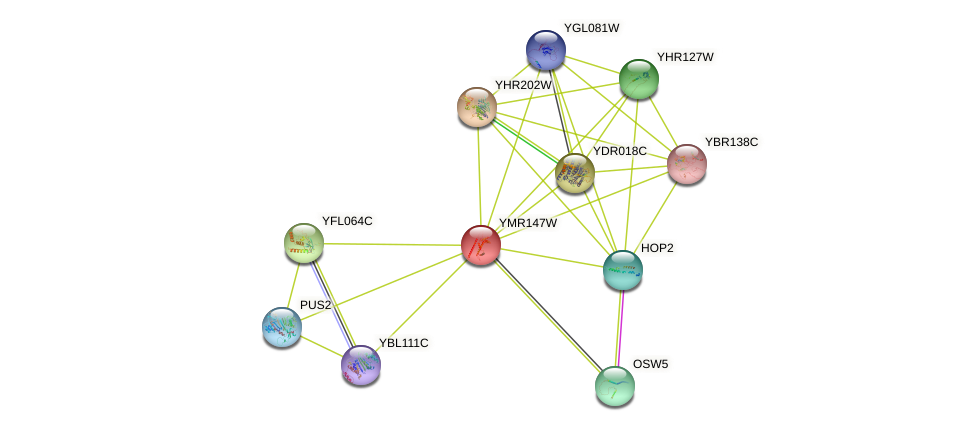 YMR147W protein (Saccharomyces cerevisiae) - STRING interaction network