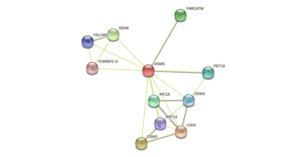 OSW5 protein (Saccharomyces cerevisiae) - STRING interaction network