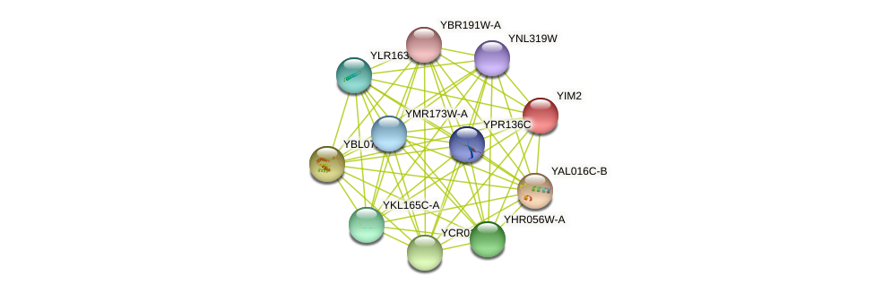 YIM2 protein (Saccharomyces cerevisiae) - STRING interaction network