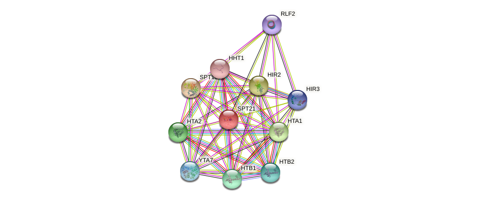 SPT21 protein (Saccharomyces cerevisiae) - STRING interaction network