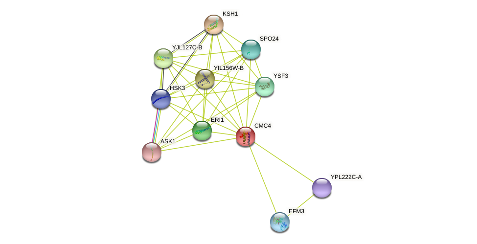 CMC4 protein (Saccharomyces cerevisiae) - STRING interaction network
