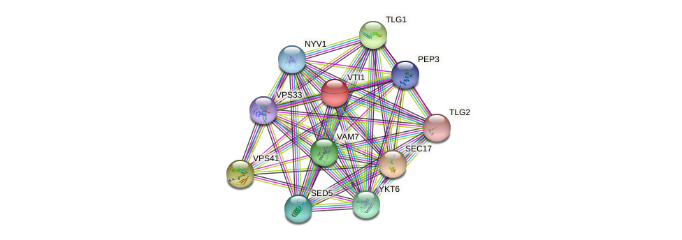 VTI1 protein (Saccharomyces cerevisiae) - STRING interaction network