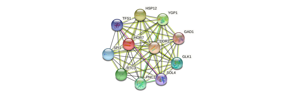HOR7 protein (Saccharomyces cerevisiae) - STRING interaction network