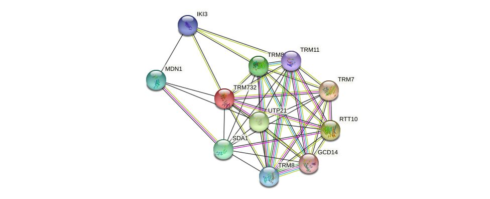 TRM732 protein (Saccharomyces cerevisiae) - STRING interaction network