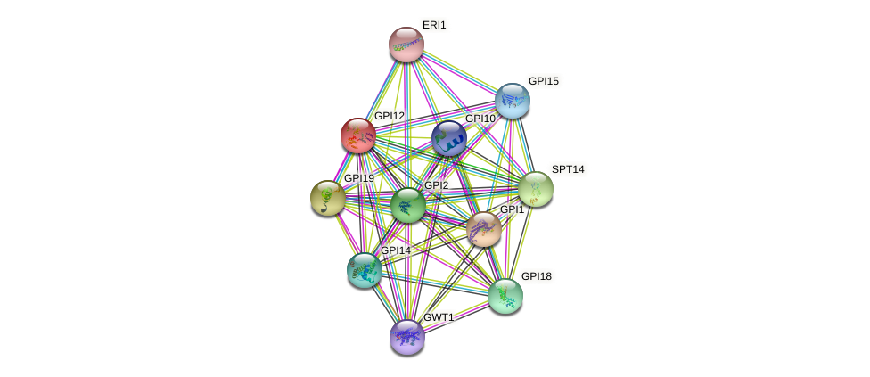GPI12 protein (Saccharomyces cerevisiae) - STRING interaction network