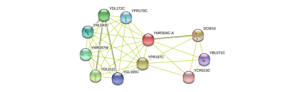 YMR304C-A protein (Saccharomyces cerevisiae) - STRING interaction network
