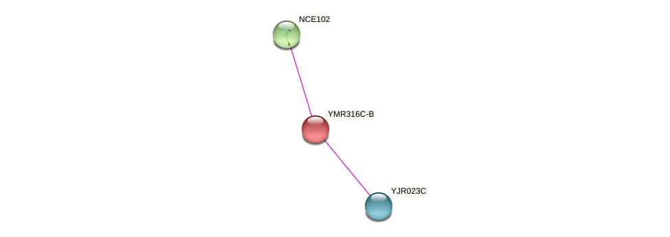 YMR316C-B protein (Saccharomyces cerevisiae) - STRING interaction network