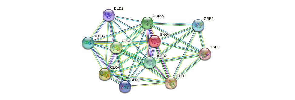 SNO4 protein (Saccharomyces cerevisiae) - STRING interaction network