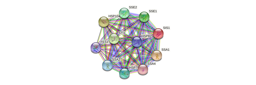 SIS1 protein (Saccharomyces cerevisiae) - STRING interaction network