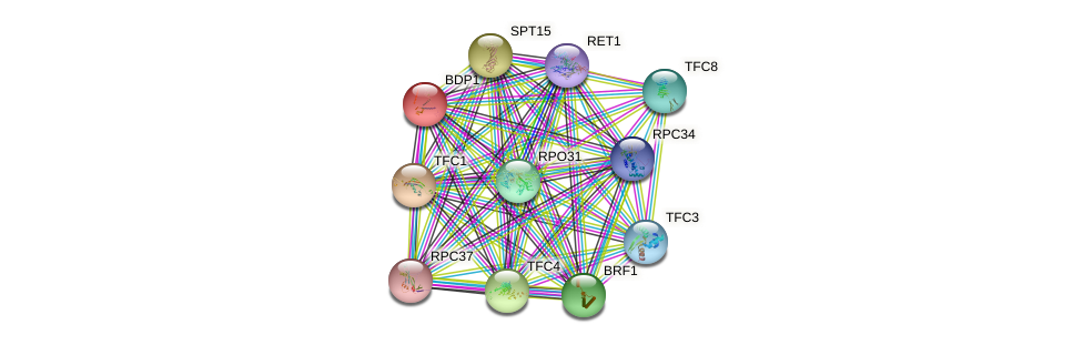 BDP1 protein (Saccharomyces cerevisiae) - STRING interaction network