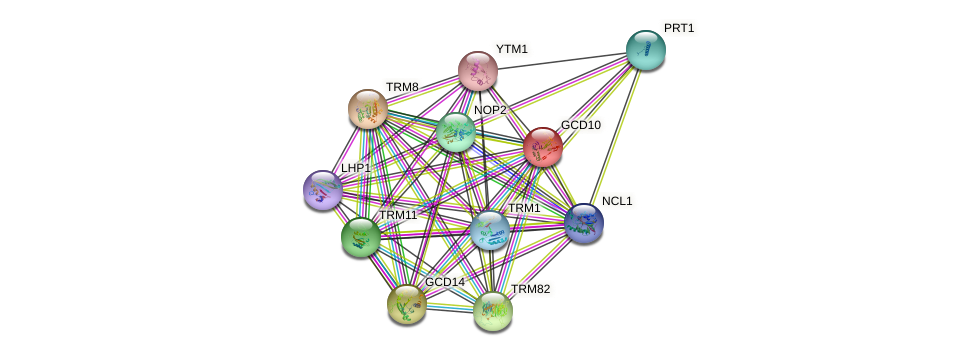 GCD10 protein (Saccharomyces cerevisiae) - STRING interaction network