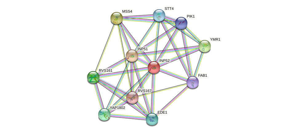 INP52 protein (Saccharomyces cerevisiae) - STRING interaction network