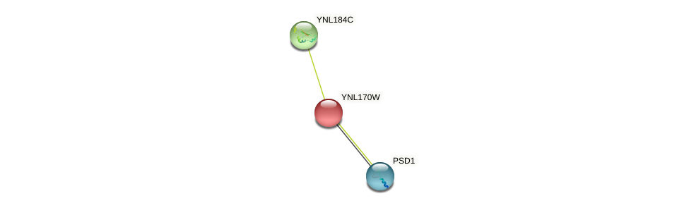 YNL170W protein (Saccharomyces cerevisiae) - STRING interaction network