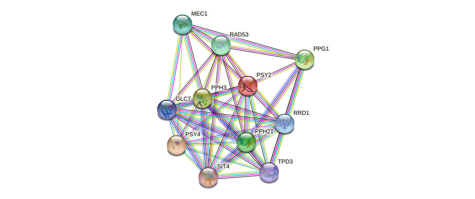PSY2 protein (Saccharomyces cerevisiae) - STRING interaction network
