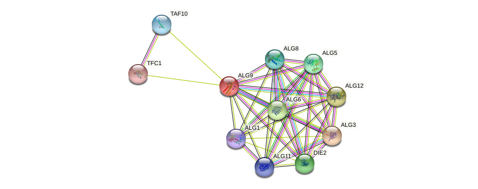 ALG9 protein (Saccharomyces cerevisiae) - STRING interaction network