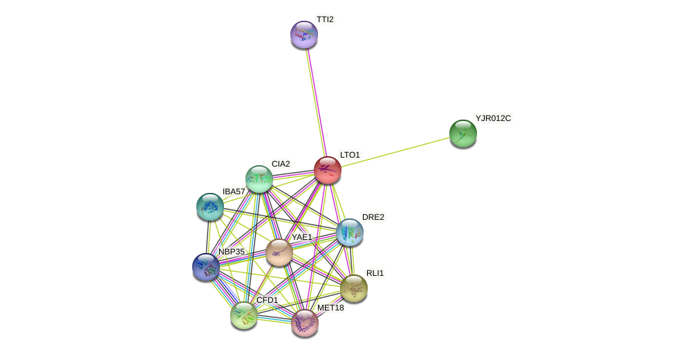 LTO1 protein (Saccharomyces cerevisiae) - STRING interaction network