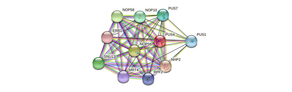 PUS4 protein (Saccharomyces cerevisiae) - STRING interaction network