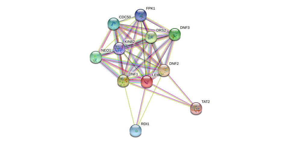 LEM3 protein (Saccharomyces cerevisiae) - STRING interaction network