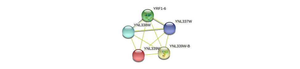 YNL339W-A protein (Saccharomyces cerevisiae) - STRING interaction network