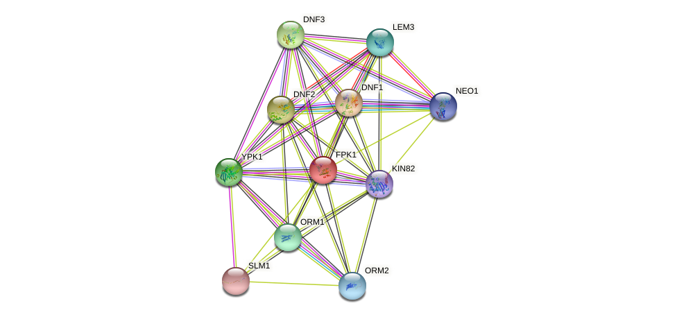 FPK1 protein (Saccharomyces cerevisiae) - STRING interaction network