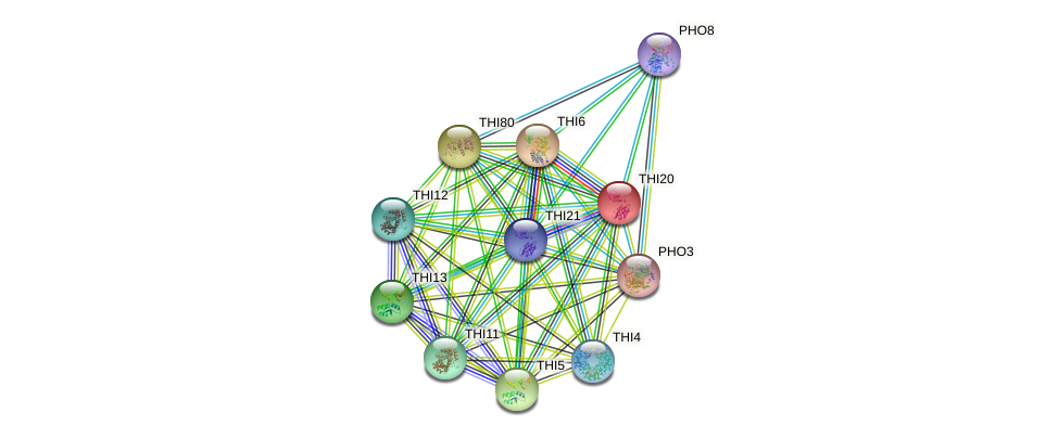 THI20 protein (Saccharomyces cerevisiae) - STRING interaction network