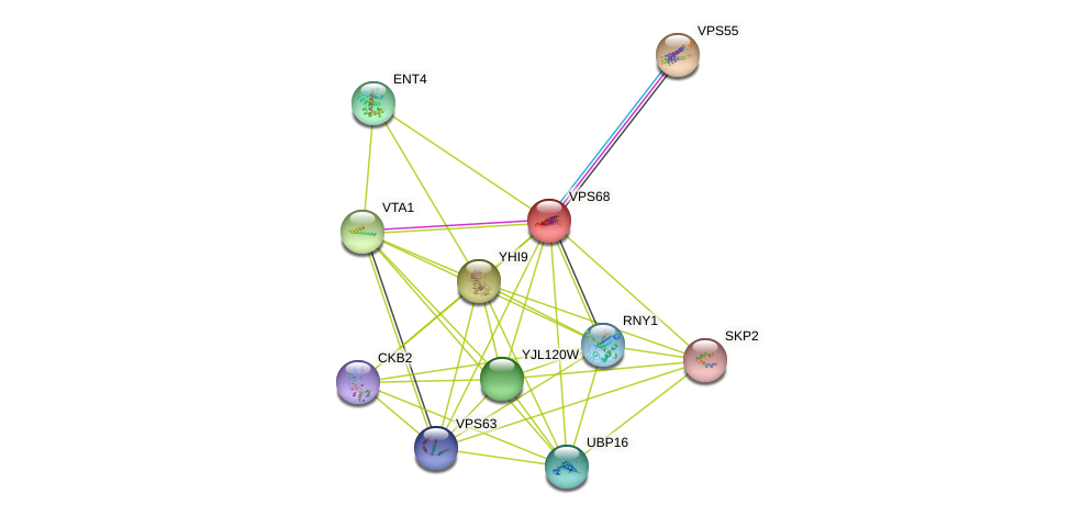 VPS68 protein (Saccharomyces cerevisiae) - STRING interaction network