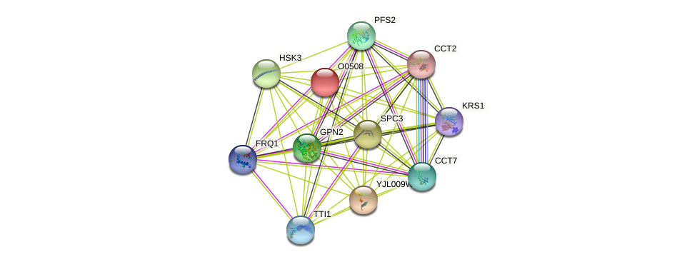O0508 protein (Saccharomyces cerevisiae) - STRING interaction network