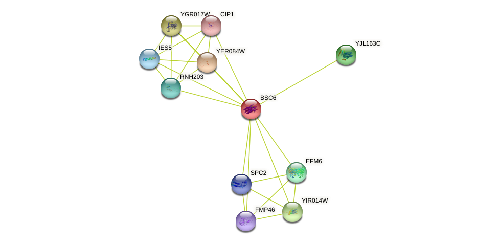 BSC6 protein (Saccharomyces cerevisiae) - STRING interaction network