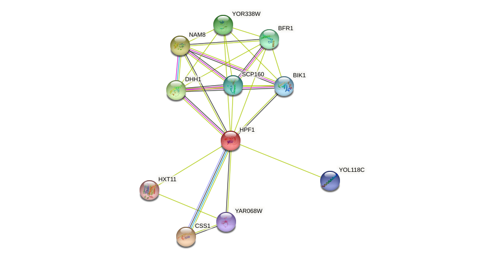 HPF1 protein (Saccharomyces cerevisiae) - STRING interaction network