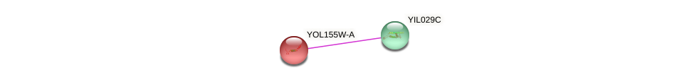 YOL155W-A protein (Saccharomyces cerevisiae) - STRING interaction network