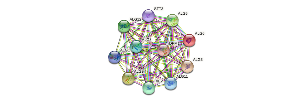 ALG6 protein (Saccharomyces cerevisiae) - STRING interaction network