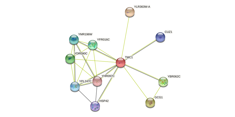 TMC1 protein (Saccharomyces cerevisiae) - STRING interaction network