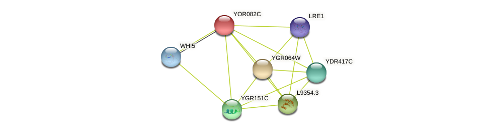 YOR082C protein (Saccharomyces cerevisiae) - STRING interaction network
