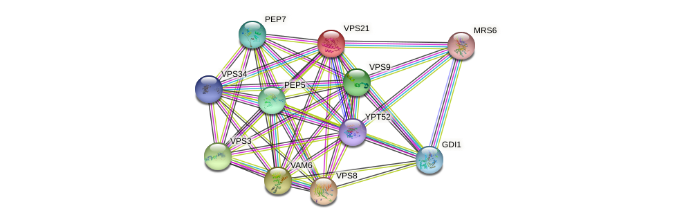 VPS21 protein (Saccharomyces cerevisiae) - STRING interaction network