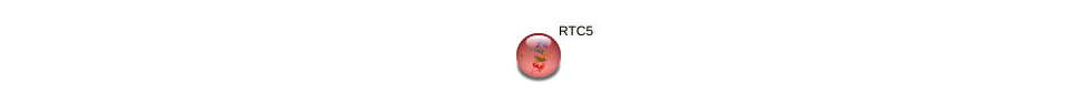 RTC5 protein (Saccharomyces cerevisiae) - STRING interaction network
